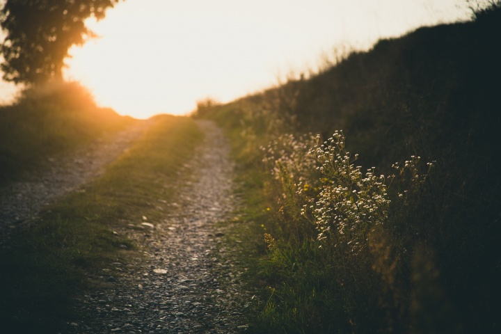 A rocky path with sunrays at the end.