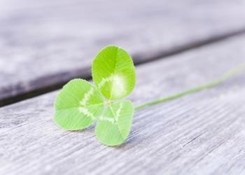 Do You Feel Lucky Today?