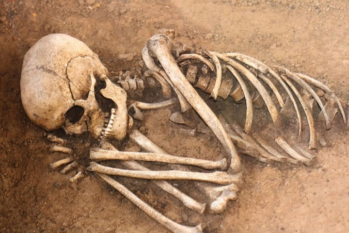 The remains of human bones in a dirt grave.