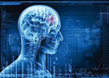 Digital images of brain