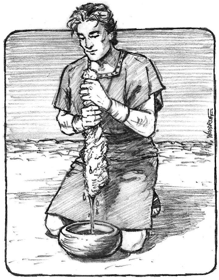 Illustration of Gideon squeezing the dew out of piece of wool.