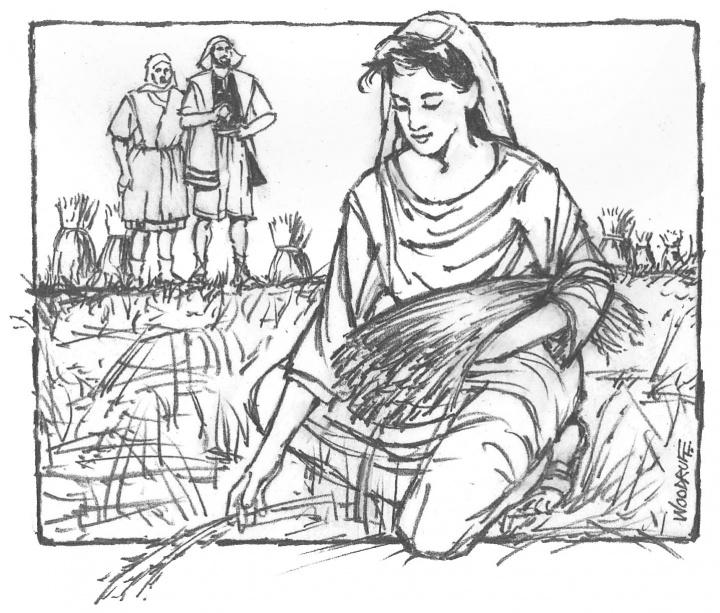 Illustration of Ruth picking grain.