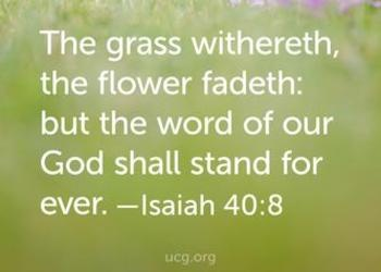 The grass withers, the flower fades: but the word of our God shall stand forever