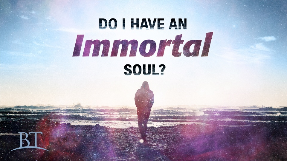Image result for the immortal soul