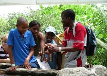 22 Caribbean Campers Gather in Barbados