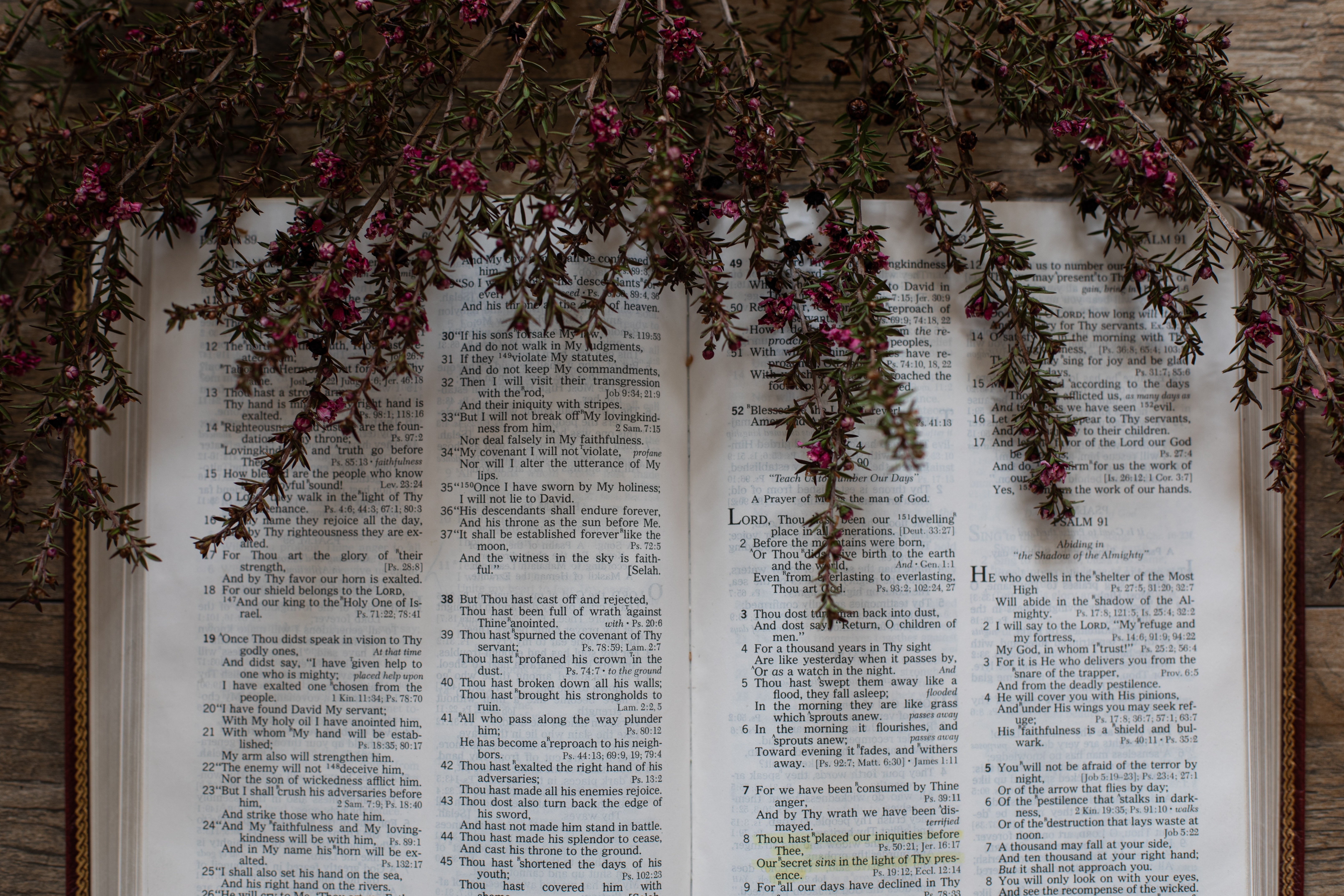 Photo of an open Bible with dried flowers laid on top.