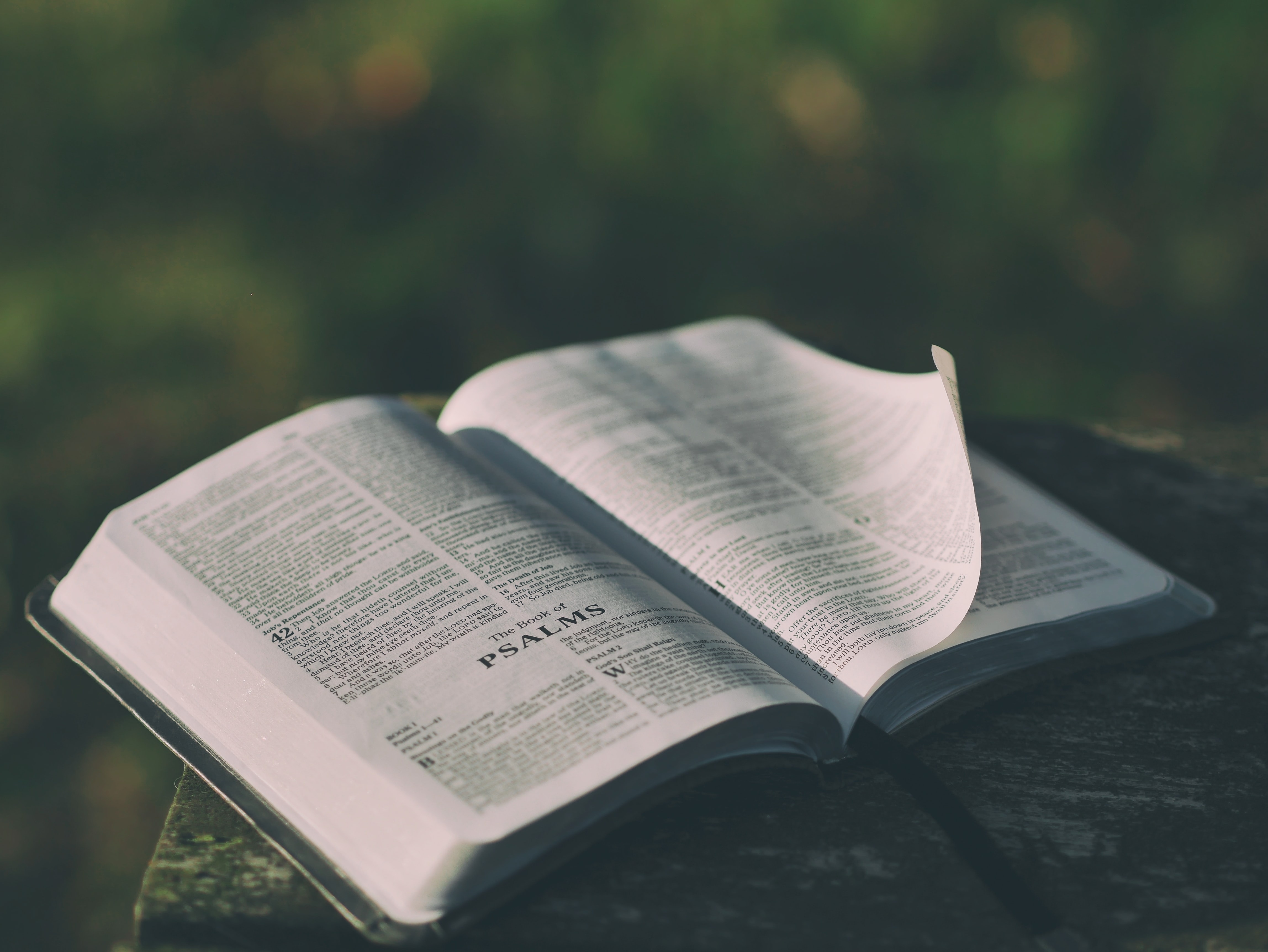 Bible open to the book of Psalms