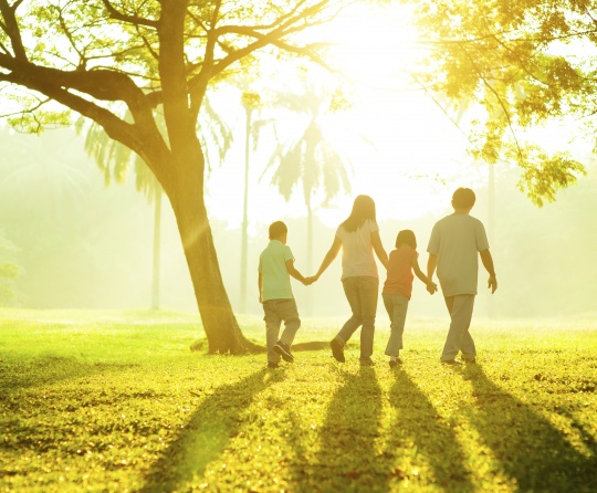A family walking together in a peaceful park.